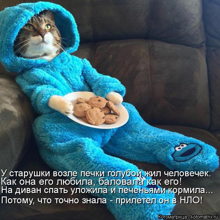 Котоматрица: На диван спать уложила и печеньями кормила... Как она его любила, баловала как его! У старушки возле печки голубой жил человечек. Потому, что