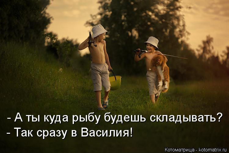 Котоматрица: - А ты куда рыбу будешь складывать? - Так сразу в Василия!