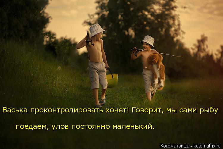 Котоматрица: Васька проконтролировать хочет! Говорит, мы сами рыбу поедаем, улов постоянно маленький.