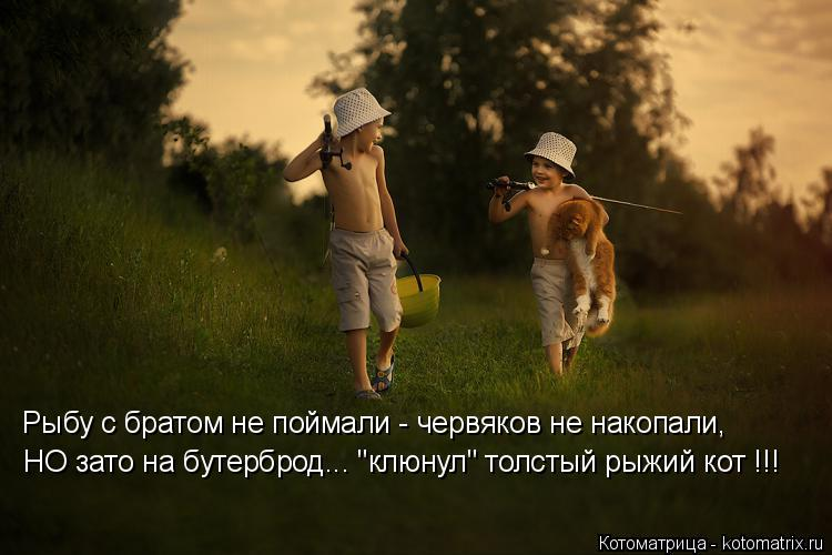 """Котоматрица: Рыбу с братом не поймали - червяков не накопали, НО зато на бутерброд... """"клюнул"""" толстый рыжий кот !!!"""