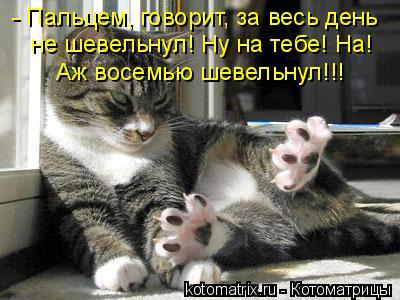 Котоматрица: - Пальцем, говорит, за весь день не шевельнул! Ну на тебе! На! Аж восемью шевельнул!!!