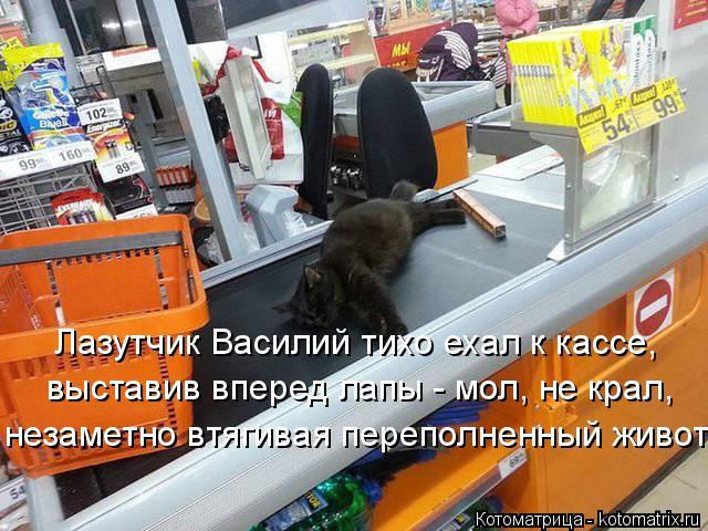 Котоматрица: Лазутчик Василий тихо ехал к кассе, выставив вперед лапы - мол, не крал, незаметно втягивая переполненный живот.