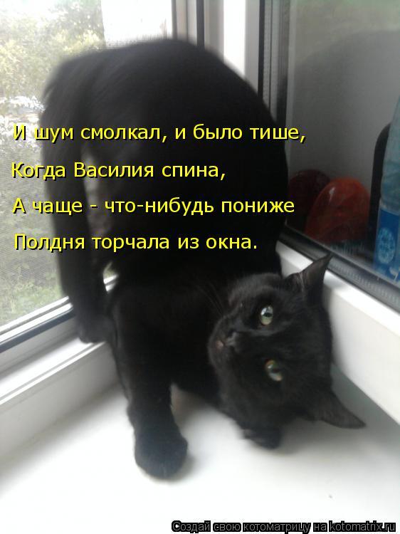 Котоматрица: Когда Василия спина, А чаще - что-нибудь пониже И шум смолкал, и было тише, Полдня торчала из окна.