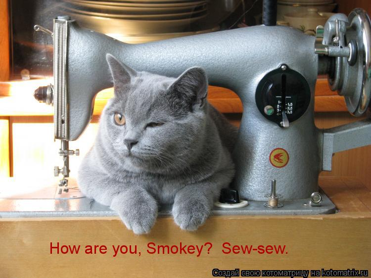 How are you, Smokey? Sew-sew.