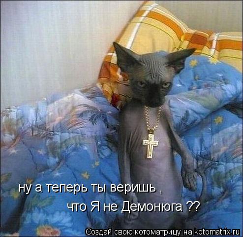 Котоматрица: ну а теперь ты веришь , что Я не Демонюга ??
