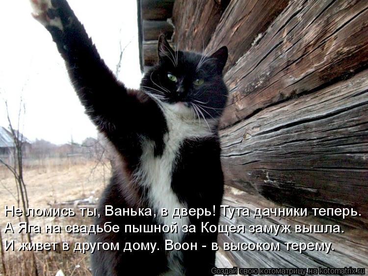 Котоматрица: Не ломись ты, Ванька, в дверь! Тута дачники теперь. А Яга на свадьбе пышной за Кощея замуж вышла. И живет в другом дому. Воон - в высоком терему.