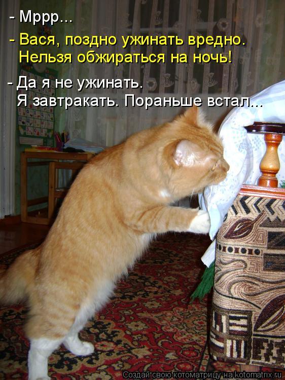 Котоматрица: - Мррр... - Вася, поздно ужинать вредно.  Нельзя обжираться на ночь! - Да я не ужинать.  Я завтракать. Пораньше встал...