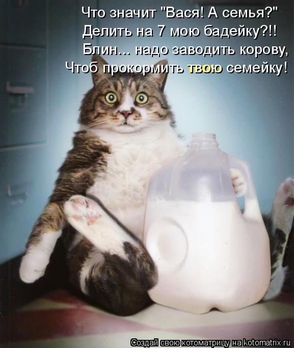 """Котоматрица: Что значит """"Вася! А семья?"""" Делить на 7 мою бадейку?!! Блин... надо заводить корову, твою Чтоб прокормить твою семейку!"""