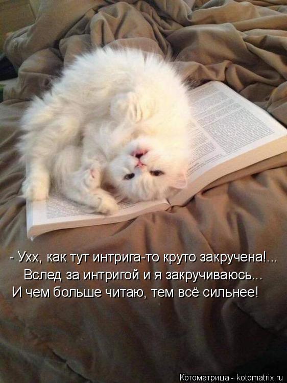 Котоматрица: - Ухх, как тут интрига-то круто закручена!... Вслед за интригой и я закручиваюсь... И чем больше читаю, тем всё сильнее!