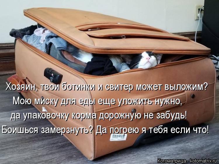 Котоматрица: Хозяин, твои ботинки и свитер может выложим? Мою миску для еды еще уложить нужно, да упаковочку корма дорожную не забудь! Боишься замерзнуть