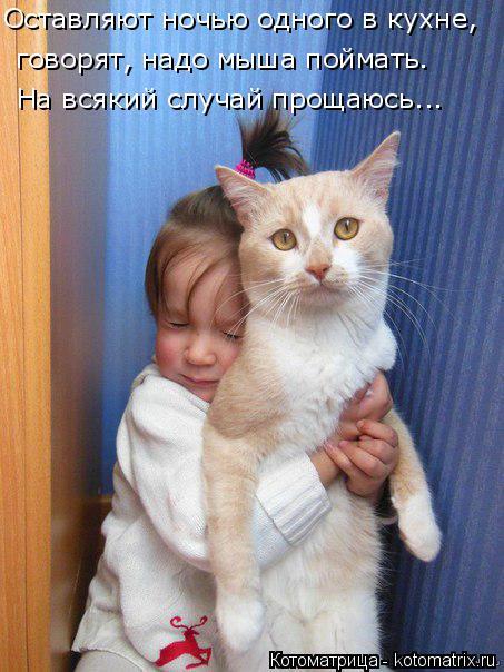 Котоматрица: Оставляют ночью одного в кухне,  говорят, надо мыша поймать. На всякий случай прощаюсь...