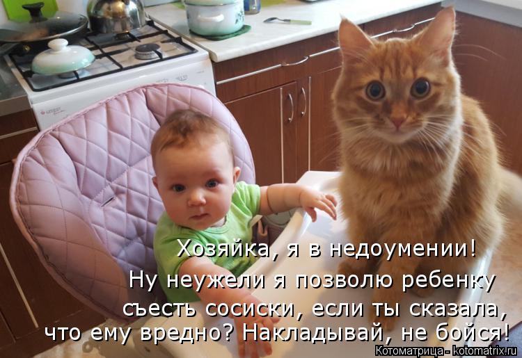 Котоматрица: Хозяйка, я в недоумении! Ну неужели я позволю ребенку  съесть сосиски, если ты сказала, что ему вредно? Накладывай, не бойся!