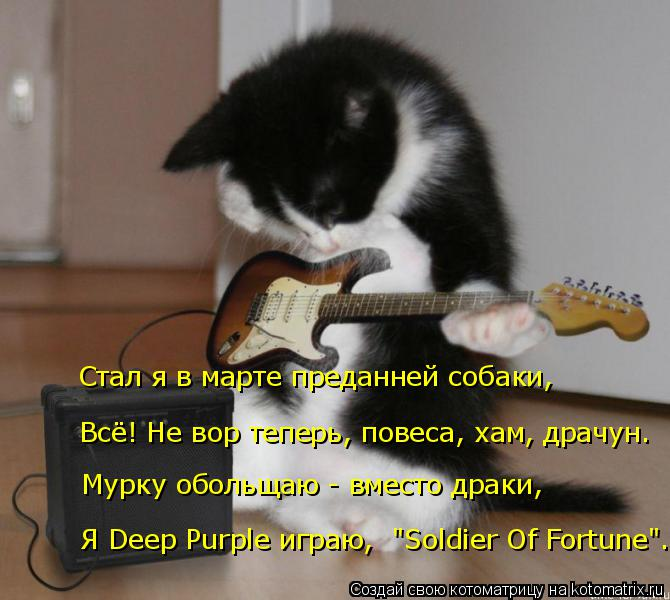 """Котоматрица: Мурку обольщаю - вместо драки, Всё! Не вор теперь, повеса, хам, драчун. Стал я в марте преданней собаки, Я Deep Purple играю,  """"Soldier Of Fortune""""."""
