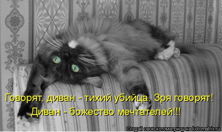 Котоматрица: Говорят, диван - тихий убийца. Зря говорят! Диван - божество мечтателей!!!