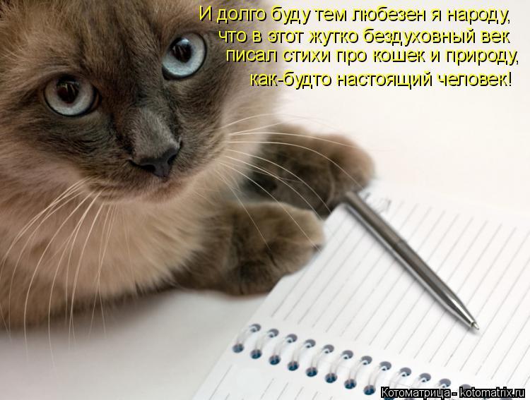 Котоматрица: И долго буду тем любезен я народу,  что в этот жутко бездуховный век писал стихи про кошек и природу,  как-будто настоящий человек!