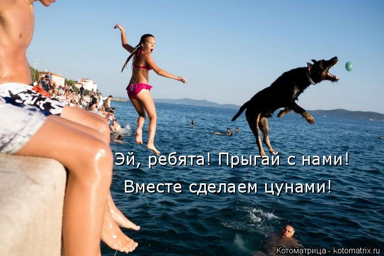 Котоматрица: Эй, ребята! Прыгай с нами! Вместе сделаем цунами!