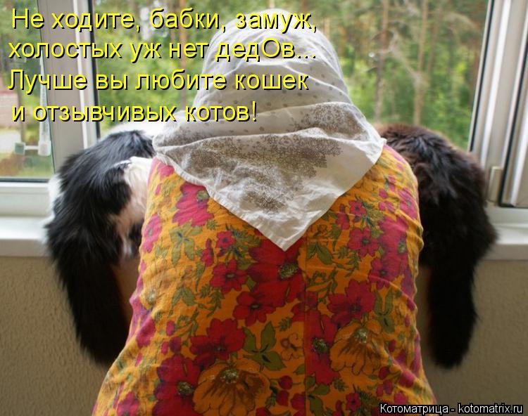 Котоматрица: Не ходите, бабки, замуж,  холостых уж нет дедОв... Лучше вы любите кошек и отзывчивых котов!