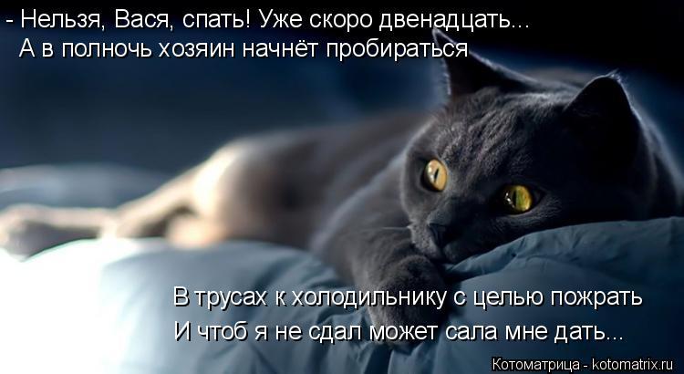Котоматрица: - Нельзя, Вася, спать! Уже скоро двенадцать... А в полночь хозяин начнёт пробираться В трусах к холодильнику с целью пожрать И чтоб я не сдал м