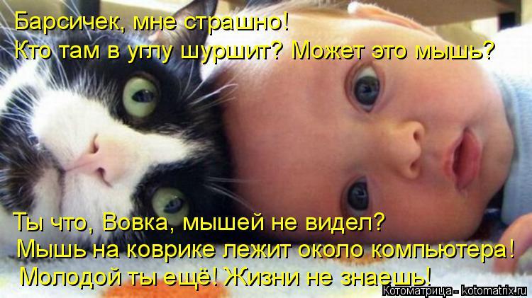 Котоматрица: Барсичек, мне страшно! Ты что, Вовка, мышей не видел? Мышь на коврике лежит около компьютера! Молодой ты ещё! Жизни не знаешь! Кто там в углу шу