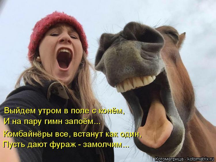 Котоматрица: Выйдем утром в поле с конём, И на пару гимн запоём... Пусть дают фураж - замолчим... Комбайнёры все, встанут как один,