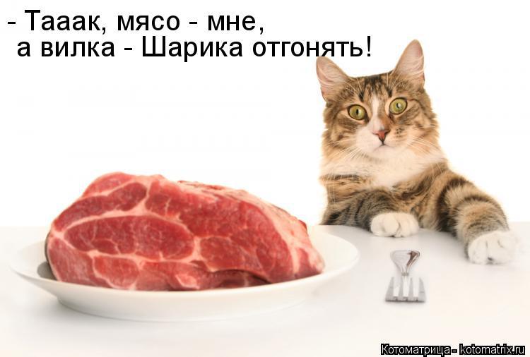 Котоматрица: - Тааак, мясо - мне,   а вилка - Шарика отгонять!
