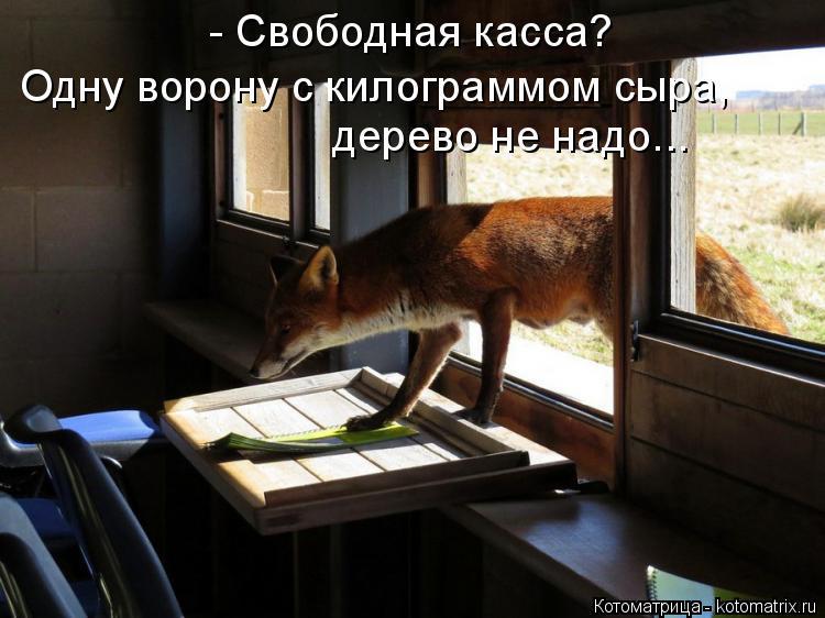 Котоматрица: - Свободная касса?  Одну ворону с килограммом сыра,  дерево не надо...