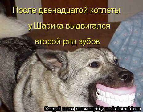 Котоматрица: После двенадцатой котлеты у Шарика выдвигался  второй ряд зубов