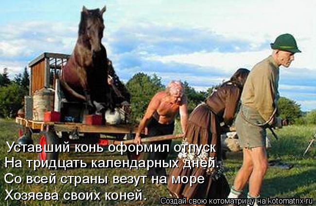 Котоматрица: Уставший конь оформил отпуск На тридцать календарных дней. Со всей страны везут на море Хозяева своих коней.