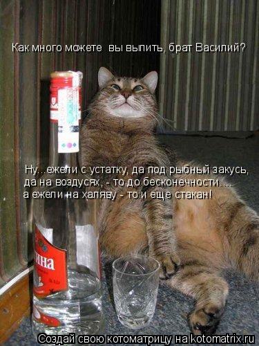Котоматрица: Ну...ежели с устатку, да под рыбный закусь, да на воздусях, - то до бесконечности.... а ежели на халяву - то и еще стакан! Как много можете  вы выпи