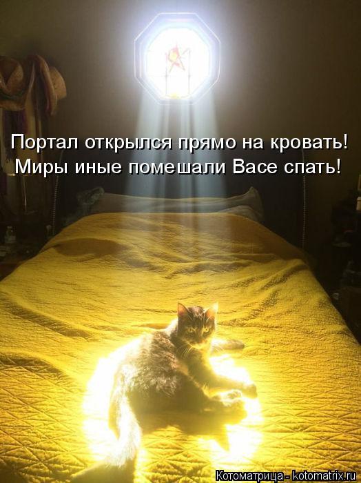 Котоматрица: Портал открылся прямо на кровать! Миры иные помешали Васе спать!