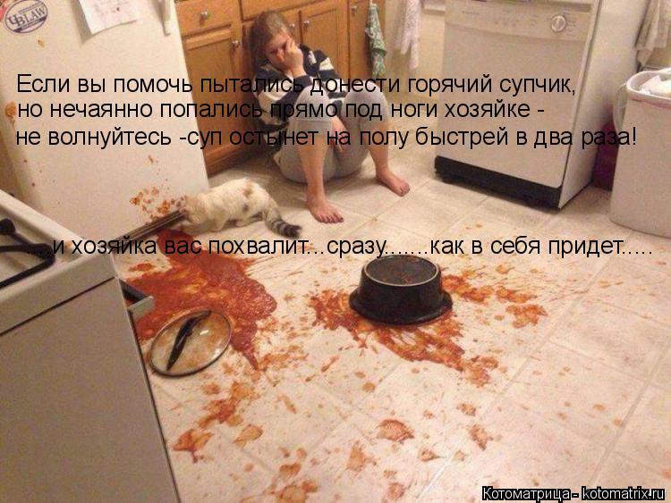 Котоматрица: Если вы помочь пытались донести горячий супчик, но нечаянно попались прямо под ноги хозяйке - не волнуйтесь -суп остынет на полу быстрей в д