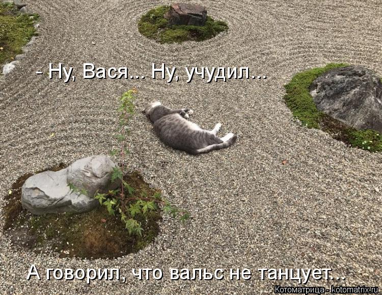 Котоматрица: А говорил, что вальс не танцует... - Ну, Вася... Ну, учудил...