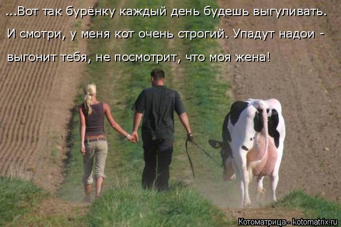 Котоматрица: ...Вот так бурёнку каждый день будешь выгуливать. И смотри, у меня кот очень строгий. Упадут надои - выгонит тебя, не посмотрит, что моя жена!