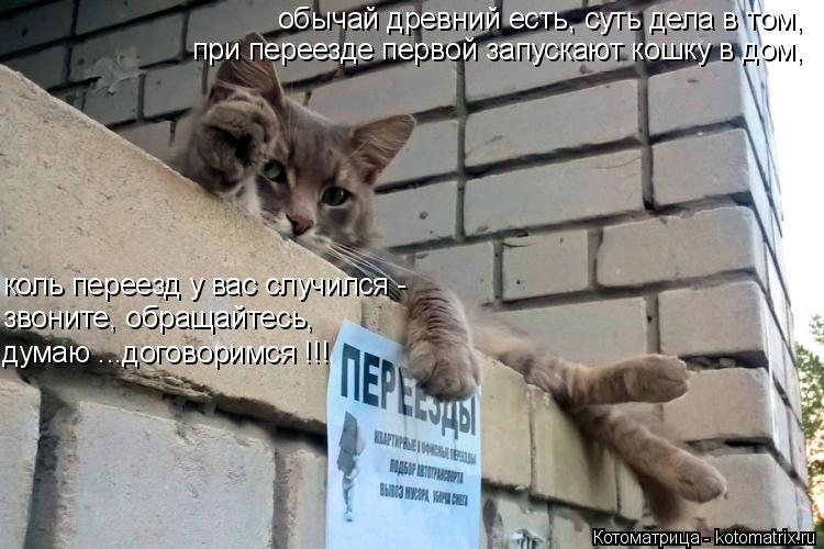 Котоматрица: обычай древний есть, суть дела в том, при переезде первой запускают кошку в дом, коль переезд у вас случился - звоните, обращайтесь, думаю ...д