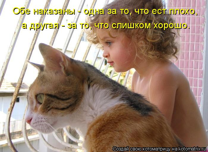Котоматрица: Обе наказаны - одна за то, что ест плохо, а другая - за то, что слишком хорошо.