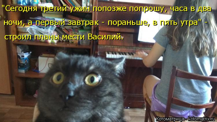 """Котоматрица: """"Сегодня третий ужин попозже попрошу, часа в два  ночи, а первый завтрак - пораньше, в пять утра"""" -  строил планы мести Василий."""