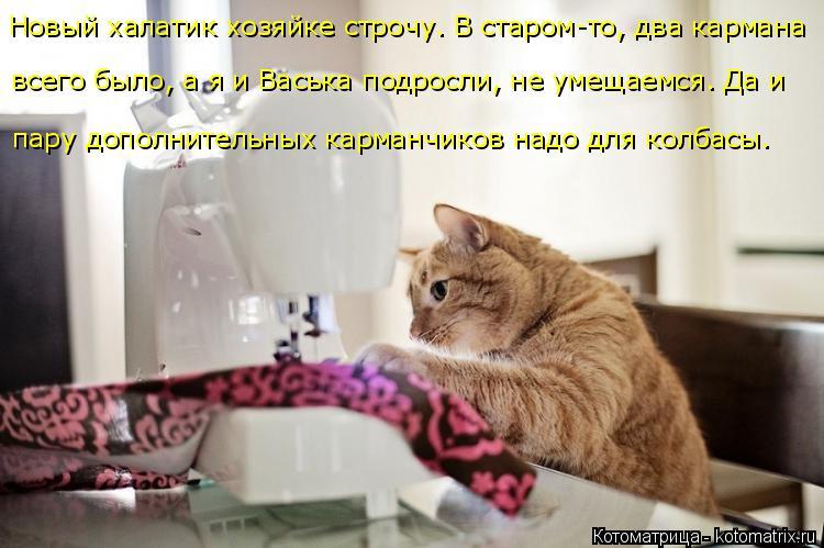 Котоматрица: пару дополнительных карманчиков надо для колбасы. всего было, а я и Васька подросли, не умещаемся. Да и  Новый халатик хозяйке строчу. В стар