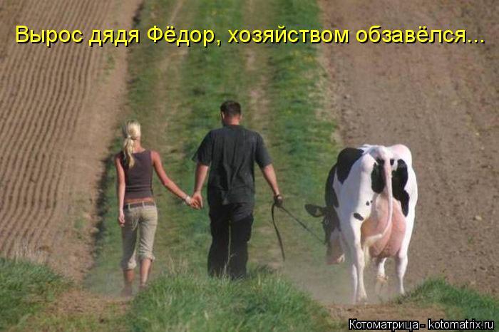 Котоматрица: Вырос дядя Фёдор, хозяйством обзавёлся...