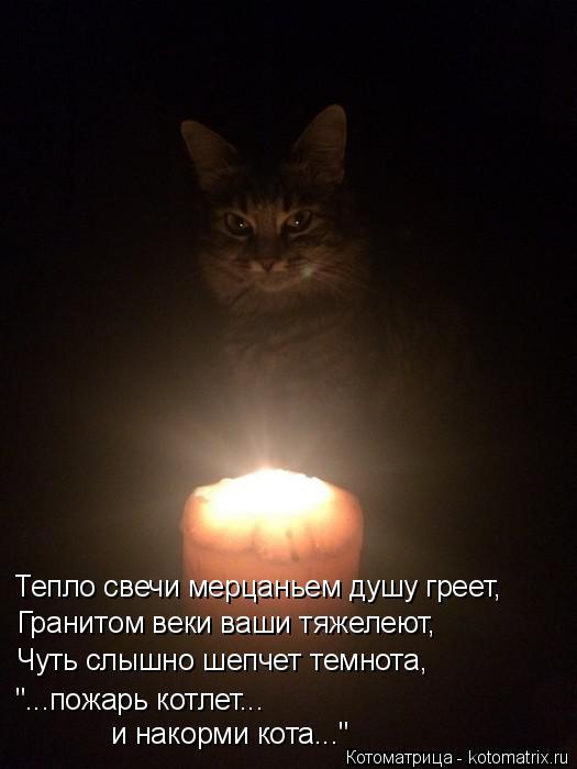"""Котоматрица: Тепло свечи мерцаньем душу греет, Гранитом веки ваши тяжелеют, Чуть слышно шепчет темнота, и накорми кота..."""" """"...пожарь котлет..."""