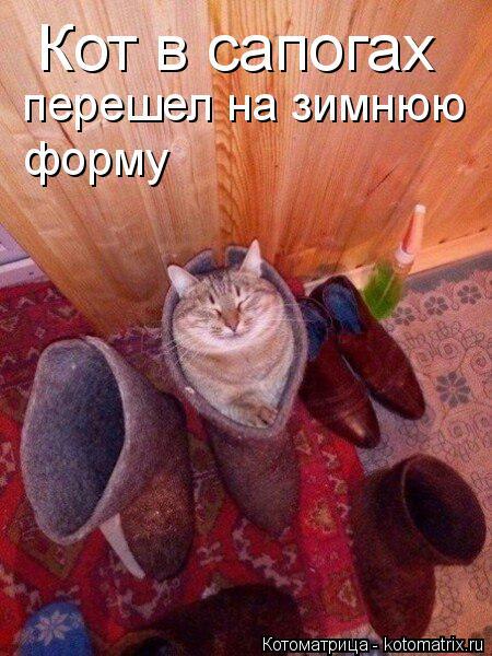 Котоматрица: Кот в сапогах перешел на зимнюю форму