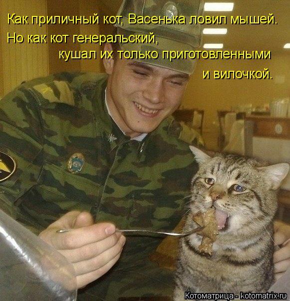 Котоматрица: Как приличный кот, Васенька ловил мышей. Но как кот генеральский,  кушал их только приготовленными  и вилочкой.