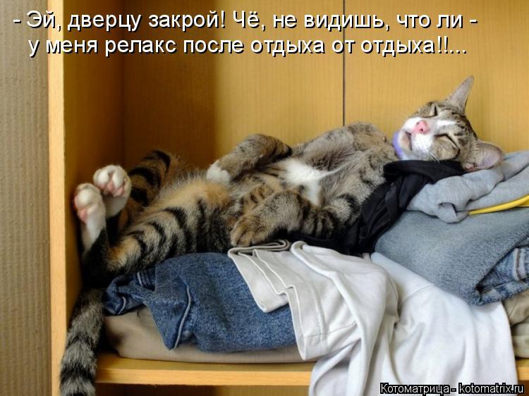 Котоматрица: - Эй, дверцу закрой! Чё, не видишь, что ли - у меня релакс после отдыха от отдыха!!...