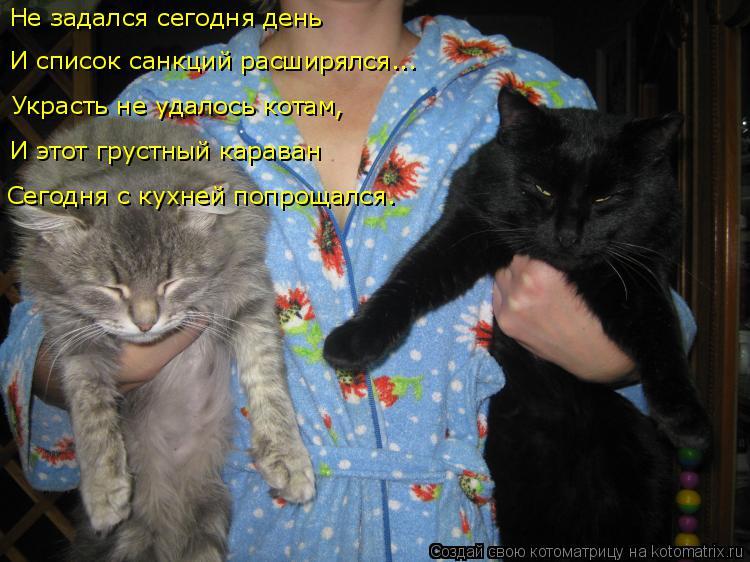 Котоматрица: Не задался сегодня день И список санкций расширялся... Украсть не удалось котам, И этот грустный караван Сегодня с кухней попрощался.