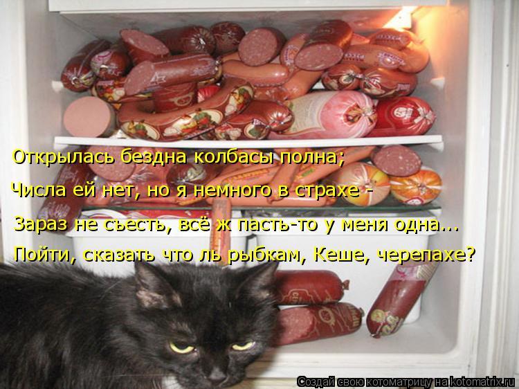 Котоматрица: Открылась бездна колбасы полна; Числа ей нет, но я немного в страхе - Зараз не съесть, всё ж пасть-то у меня одна... Пойти, сказать что ль рыбкам