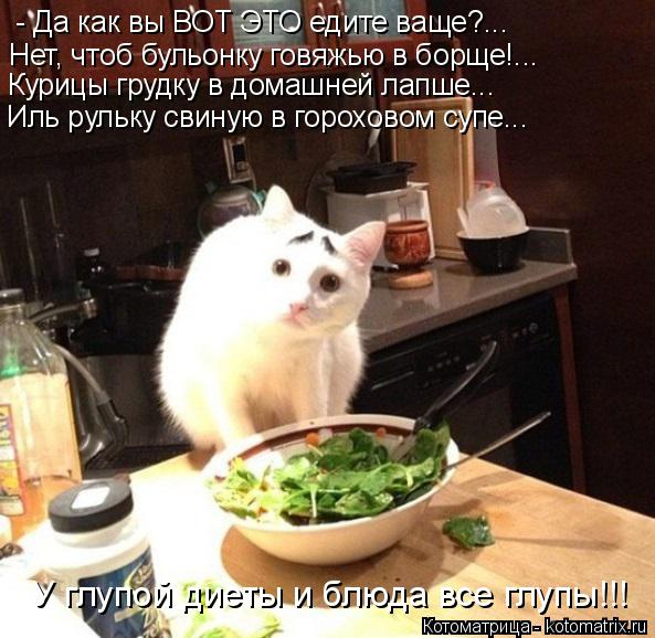 Котоматрица: - Да как вы ВОТ ЭТО едите ваще?...  Нет, чтоб бульонку говяжью в борще!... Курицы грудку в домашней лапше...  Иль рульку свиную в гороховом супе... У