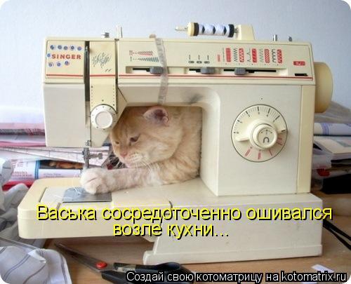 Котоматрица: Васька сосредоточенно ошивался возле кухни...