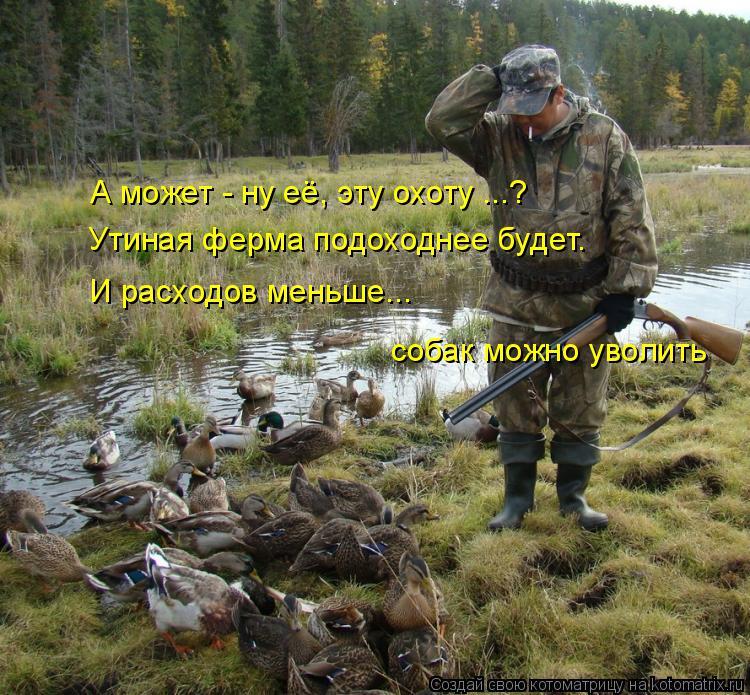 Котоматрица: А может - ну её, эту охоту ...? Утиная ферма подоходнее будет. И расходов меньше... собак можно уволить