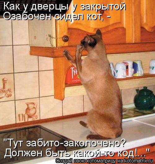 """Котоматрица: Как у дверцы у закрытой Озабочен сидел кот, - """"Тут забито-заколочено?  Должен быть какой-то код!..."""""""