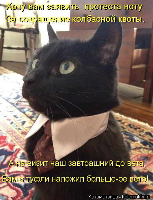 Котоматрица: Хочу вам заявить  протеста ноту  За сокращение колбасной квоты. А на визит наш завтрашний до вета,  Вам в туфли наложил большо-ое вето!
