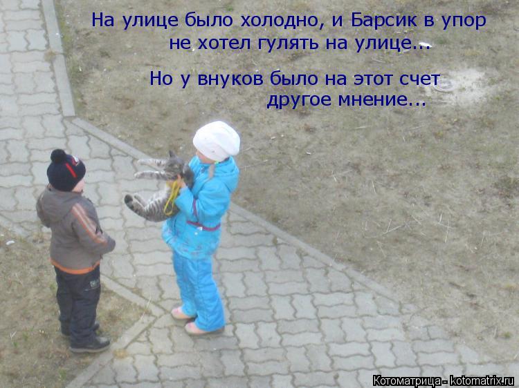 Котоматрица: На улице было холодно, и Барсик в упор не хотел гулять на улице... Но у внуков было на этот счет  другое мнение...